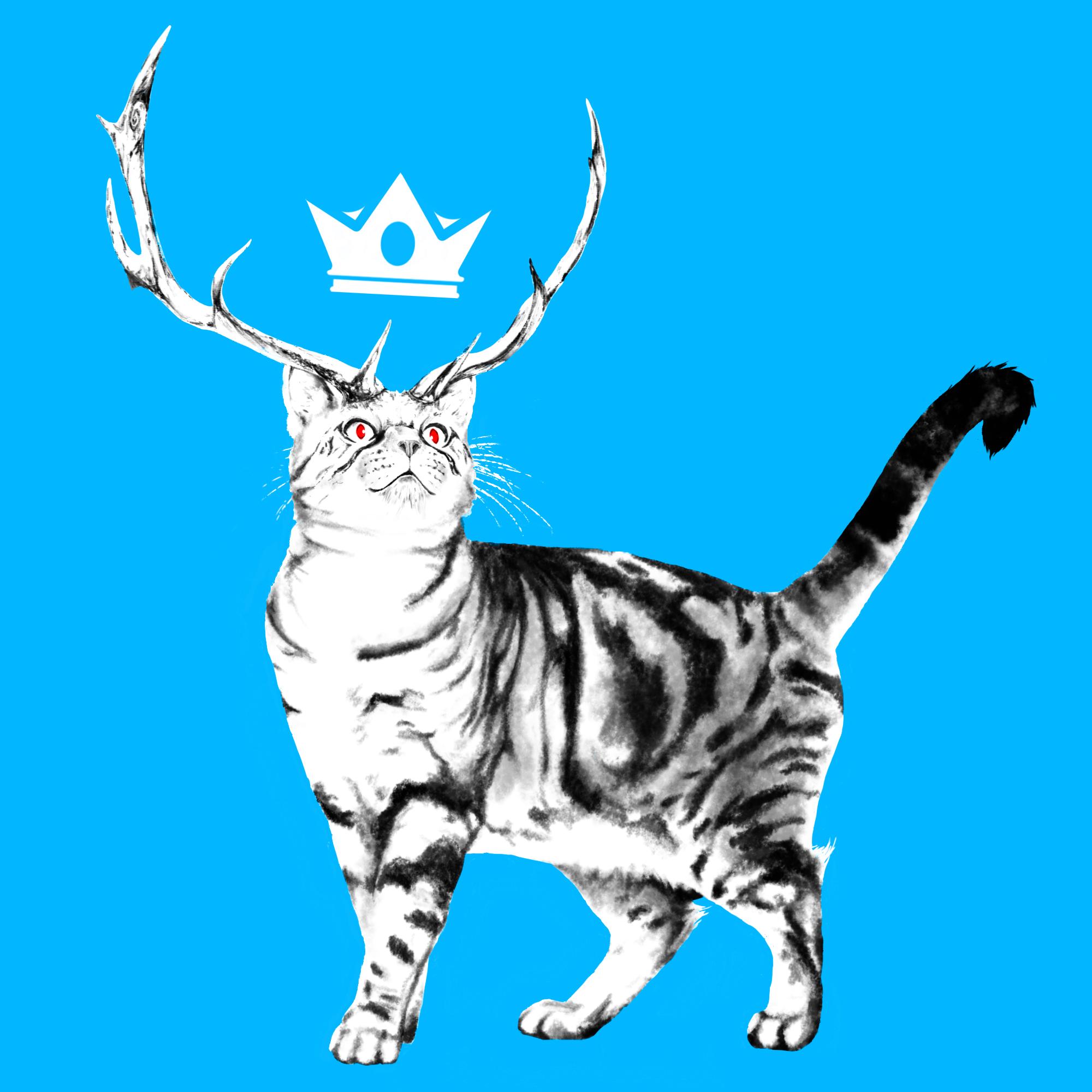 Cat 1