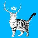 Thumb cat 1